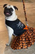 DinkyDogClub Halloween Dog Dress - Scary Cute Review