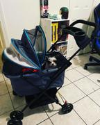 DinkyDogClub Ibiyaya Easy Strolling Dog Stroller Review