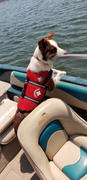 DinkyDogClub Paws Aboard Dog Life Jacket - Red Review
