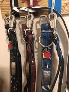 Pit Bull Gear Dual Handle Twisted Leather Leash Review