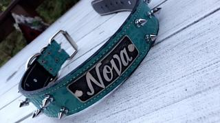 Pit Bull Gear W46 - 2 Name Plate Spiked Leather Dog Collar Review