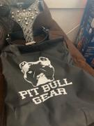Pit Bull Gear NH11 - Name Plate Dog Harness w/ Bucket Studs Review