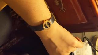 Philip Stein Horizon Bracelet-Large Rose Gold Plated Icon - Model 10L-BBRG Review