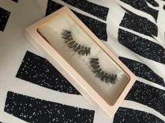 BD Lashes Calgary Review