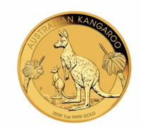 Bitgild 1 oz Nugget Kangaroo 2020 Gold Coin Review