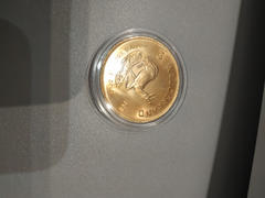 Bitgild 1/2 oz Krugerrand 2020 Gold Coin Review