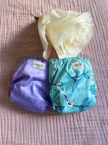 Peachi Baby Ostrich Reusable Nappy Set Review