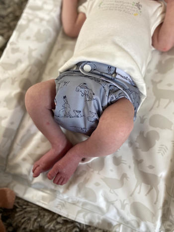 Peachi Baby Kittens Reusable Nappy Set Review