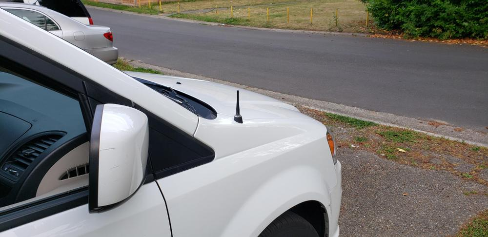 CravenSpeed Stubby Antenna Replacement for the Dodge Avenger 2007-2010 4 inches
