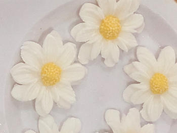 Blossom Sugar Art Daisy Flower Cutter and Mould Single Set Review