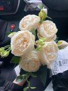 Hansel & Gretel White Artificial Flowers Peony Bouquet Review