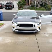 RTR Vehicles RTR Grille w/ LED Accent Vent Lights (18-19 GT & EcoBoost) Review