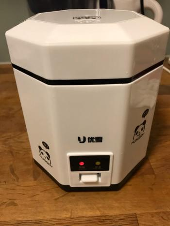 Kitchen Groups Mini Rice Cooker Review