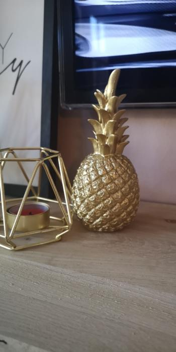 Kitchen Groups Nordic Style Modern Golden Pineapple Kitchen Decor Review