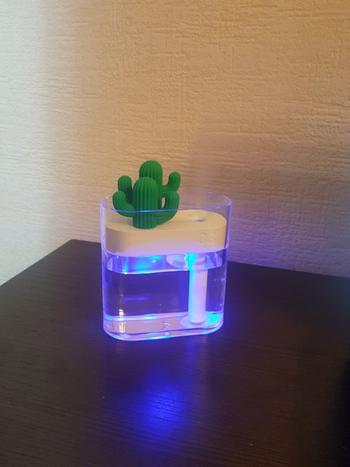 Kitchen Groups Clear Cactus Ultrasonic Air Humidifier Review