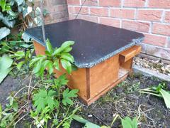 Green Feathers Hedgehog Box - Eco-Friendly Hedgehog House Review