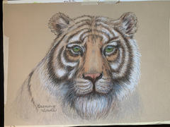 Ann Kullberg Mark Menendez: Bengal Tiger Colored Pencil Tutorial Review