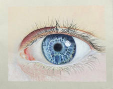 Ann Kullberg Ultimate Guide to Drawing an Eye Review