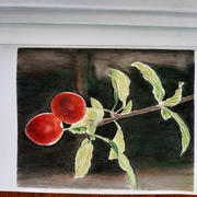 Ann Kullberg Sunlit Cherry Plums Tutorial - Free Download Review
