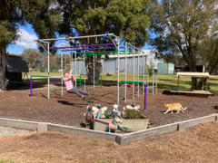 FUNKY MONKEY BARS AUSTRALIA THE MARMOSET Review