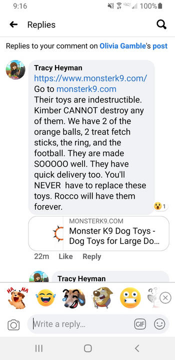 Monster K9 Dog Toys Indestructible Football Review