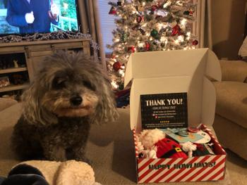 The Kringle Krate Dog Lovers Box Review