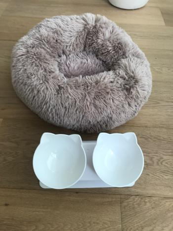 SNAPPYFINDS - Anti-Vomiting Orthopedic Cat Bowl Review