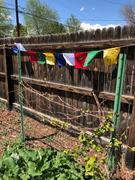 Dharma Shop Blank Prayer Flags Review