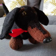 Deramores Stanley the Dachshund - Dera-Dogs in Deramores Studio DK Review