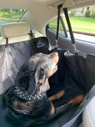 MEADOWLARK US LLC Hammock Car Back Seat Cover for Dogs Review