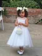 Princessly Sheer Neck Polka Dot Tulle Flower Girl Dress with Champagne Sash Review