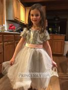 Princessly Short Sleeves Silver Sequin Gray Tulle Wedding Flower Girl Dress Review