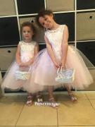 Princessly Ivory Lace Pink Tulle Wedding Flower Girl Dress with V Back Review