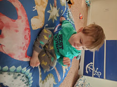 audrey-and-bear Dinosaur Dreams | Floor Pillow Review