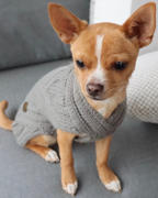 Sebastian Says USA Merino Wool Weave Knit Dog Sweater - Oat Review