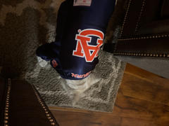 Little Earth Productions Auburn University Pet Stretch Jersey Review