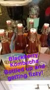 Craft a Brew Kombucha Starter Kit Review