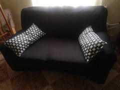 Modern Decor STRETCHABLE, STAIN-RESISTANT, & SPILL-PROOF SOFASLEEVE™ Review