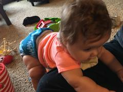 Green Mountain Diapers Thirsties Snap One Size Pocket Diaper (Stay-Dry) Review