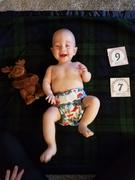 Green Mountain Diapers Thirsties Duo Wrap Hook and  Loop Collections Review