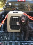 Gunner Kennels G1™ MEDIUM Review