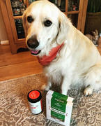 Rocco & Roxie Supply Co. Hip & Joint Supplement For Dogs Review