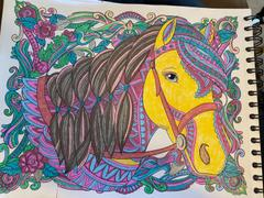 ColorIt Coloring Books Majestic Horses Coloring Book for Adults Illustrated by Terbit Basuki Review