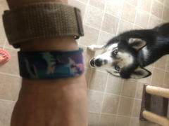 ZOX Lead the Pack Review