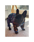 Frenchiestore French Bulldog Pajamas | Frenchie Clothing | The Child Review