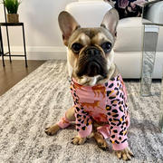 Frenchiestore French Bulldog Pyjamas | Frenchie Kleidung | Wild One Bewertung