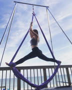 Uplift Active Aerial Silks Set with All Hardware Review