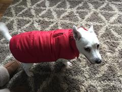 Brooklyn Trading Washable Pet Dog Jacket - Red 38 Medium Review