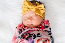 Posh Peanut Dusk Rose Muslin Swaddle Review