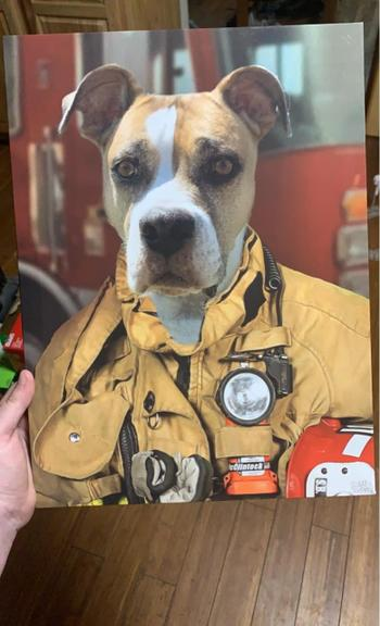 Canvasist Firefighter Pet Canvas Review